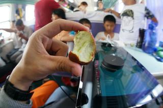 上海~トルファンの二等座席、硬席での2泊3日の旅