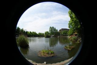 Lomo fisheye2、魚眼レンズで撮影した板橋区の見次公園の風景
