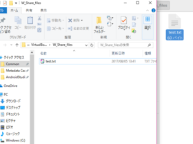 VirtualBoxでファイル共有@Windows10(ホストOS)にZorin OS(ゲストOS)で作成したテキストファイルが保存されている事を確認