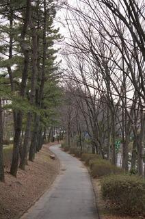 森林公園緑道、滑川町