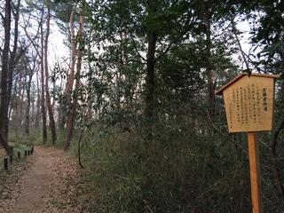 武蔵丘陵森林公園、鎌倉街道