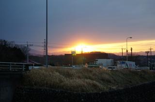 森林公園緑道から見た夕日