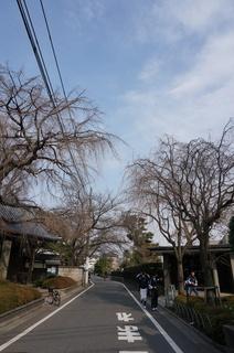 板橋区赤塚の東京大仏付近の風景