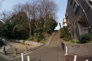 赤塚溜池公園付近