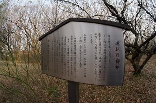 赤塚溜池公園の城跡
