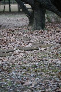赤塚溜池公園の地面