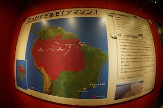 国立科学博物館の大アマゾン展観覧@でっかすぎるぞ!アマゾン!