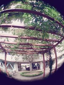 板橋区上板橋、前野町あたりの団地の風景
