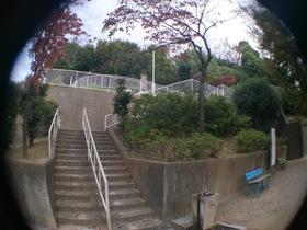 板橋区上板橋、前野町付近の公園