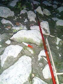 百均ダイソー(DAISO)で買った100円の釣り竿で荒川で魚釣りを試みるも撃沈